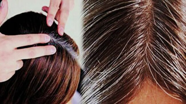 home-remedies-to-turn-white-hair-black-without-chemical-dyes